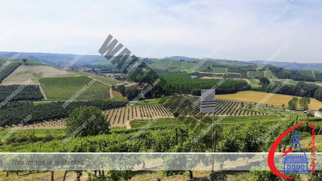 Vista dal Castello di Grinzane Cavour