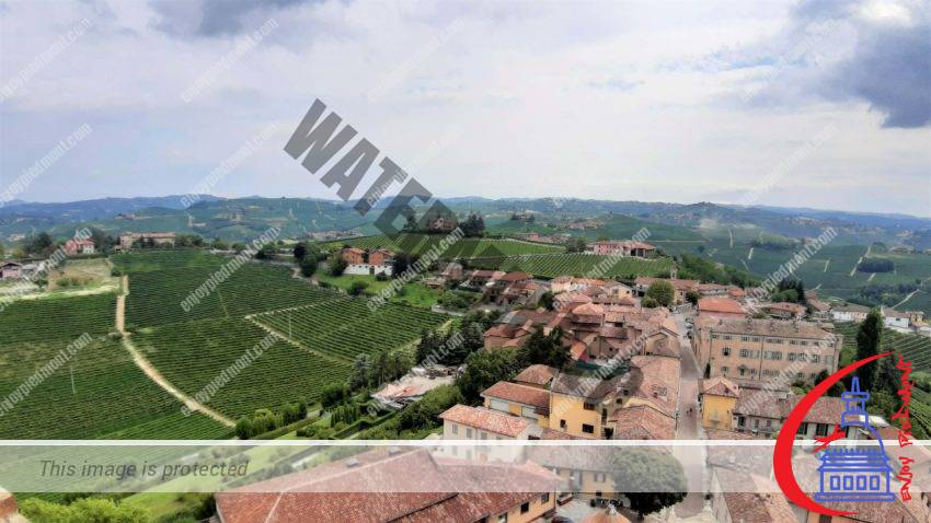 Vista della torre di Barbaresco - Featured Image