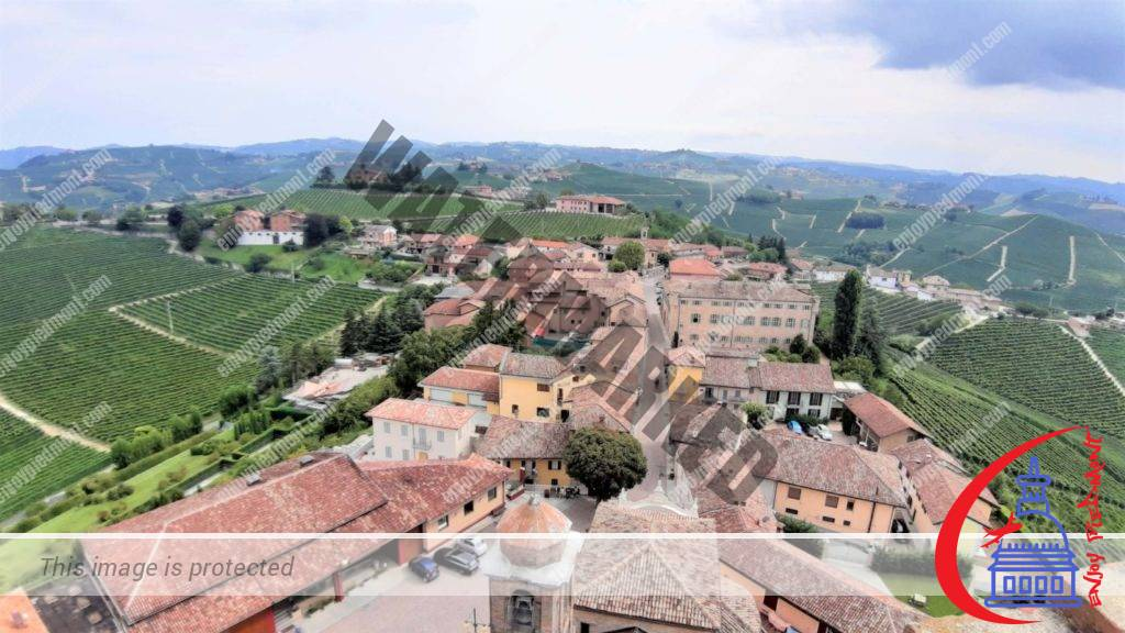 View from the Tower of Barbaresco